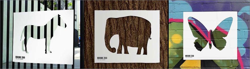 bronx_zoo.jpg